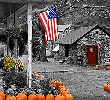 Rural America - Fall Harvest by DJ Florek