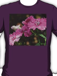 The Dianthus of the Divine T-Shirt