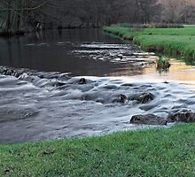 The River and Weir, Dovedale by Rod Johnson