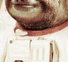 Astro Sloth Sticker