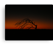 Dawn and Dead Canvas Print