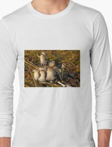 Shaggy Ink Caps - (Coprinus comatus) Long Sleeve T-Shirt