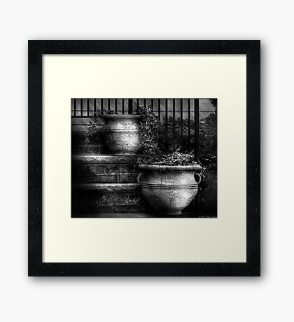 Two pots of ivy Framed Print