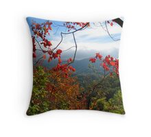 View From Laurel Falls Trail--Great Smoky Mountains Throw Pillow