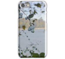 Fall on the Fraser iPhone Case/Skin