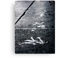Water as Ink Canvas Print