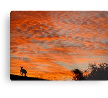 I know you're there ! Metal Print