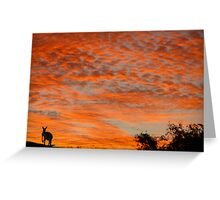 I know you're there ! Greeting Card
