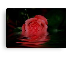 TREATMENT OF A ROSE Canvas Print
