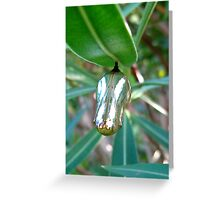 gentle canopy Greeting Card