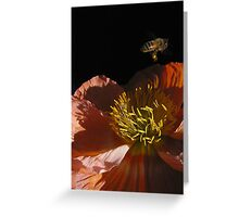 Bee Gone Greeting Card