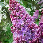 Lilac Swirl by Jim  Darnall