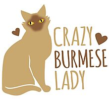 Crazy Burmese Cat Lady Photographic Print