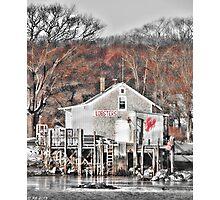 Coastal Morsel Photographic Print