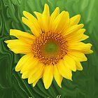 Kansas Sunflower by Jim  Darnall
