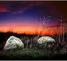 Two Rocks Alone by Mark Ross