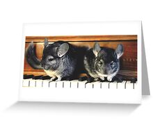 Chinchillas on the Piano Greeting Card
