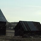 Working Barns at First Light by TerriRiver