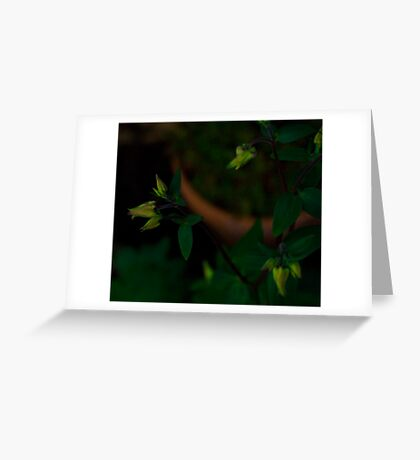 Opening Soon Greeting Card
