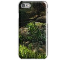 Toowoomba Japanese gardens iPhone Case/Skin