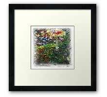 The Atlas Of Dreams - Color Plate 64 Framed Print