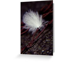 lost down feather ... Greeting Card
