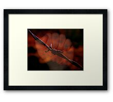 troubled history ... Framed Print