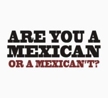 One Upon A Time In Mexico - Are You A Mexican by scatman