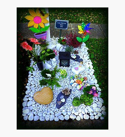 Grave -  Someone's  Child Photographic Print