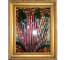 Glass Assemblage  Photographic Print