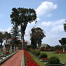 Bahai Garden, Akko - ISRAEL NORTH by Nira Dabush