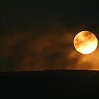 Sunset by Fiona MacNab
