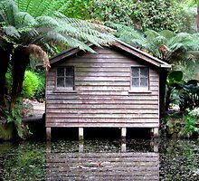 The Boathouse in spring, Alfred Nicholas Gardens by Elana Bailey