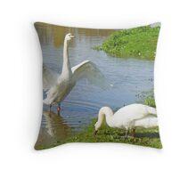 A Rampant Mute Swan Throw Pillow