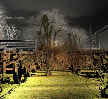 GHOST TRAIN & A TREE by TIMKIELY