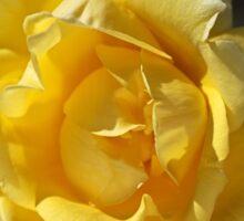 Happy Yellow Rose Sticker