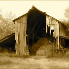 Old Barn w/fade by Julie  Davison