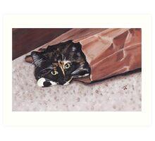 Cat in the bag. Art Print