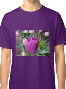 Pink and Purple Tulips Classic T-Shirt