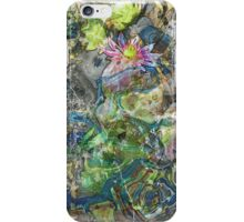 The Atlas Of Dreams - Color Plate 76 iPhone Case/Skin