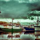 Harbourside at Strahan by wallarooimages