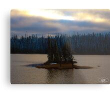 Remote Island in Northern Ontario Metal Print