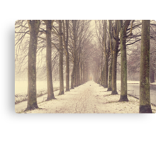 Winter Alley in Rhoon. Holland Canvas Print