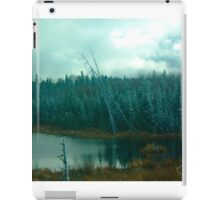 Evergreens of Northern Ontario iPad Case/Skin