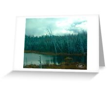 Evergreens of Northern Ontario Greeting Card