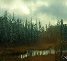 Northern Ontario by elisehendrick