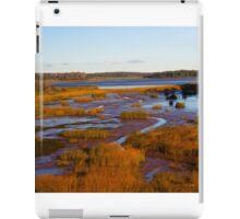 Prince Edward Island Wetlands iPad Case/Skin