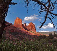 Red Earth, Blue Sky by Wilson Wyatt  Photography