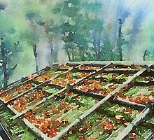 Forest Hut Roof with Moss and Fallen Autumn Leaves by Beverly Claire Kaiya