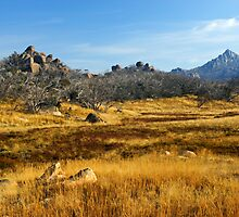 Mount Buffalo by Darren Stones